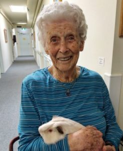 Pet Therapy Program in Aged Care