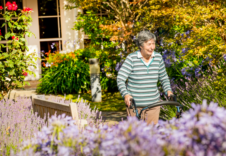 Fall Prevention for the Elderly