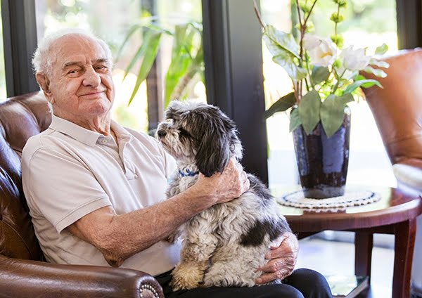 The benefits of pets and the elderly